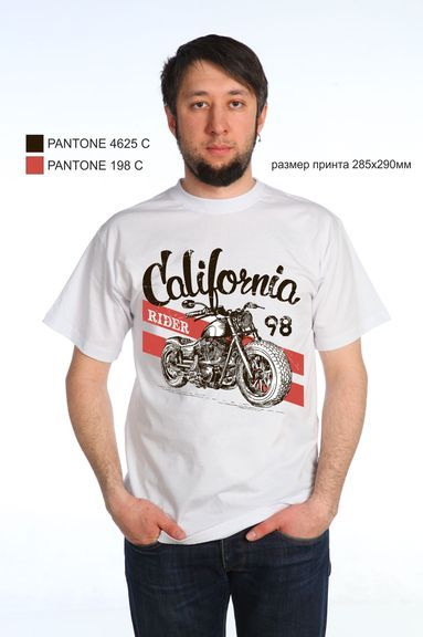 Калифорния футболка мужская